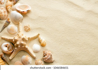top view of sandy background with dunes and various seashells