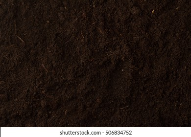 Top view of seamless dark soil texture background with nothing on it