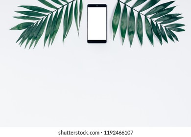 Top view smart phone with blank screen among two palm leaves on white background. Flat lay summer frame with copy space.