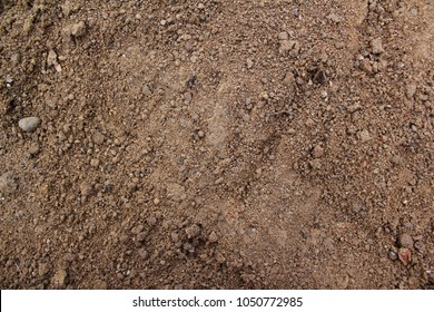 Top view Soil texture background. Sand .
