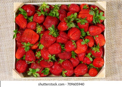 Top view of tasty spanish strawberries freshly collected on a wooden box