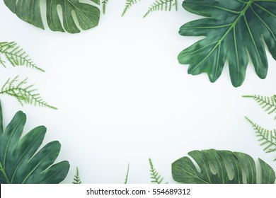 Top view Tropical palm leaves. Flat lay, White background