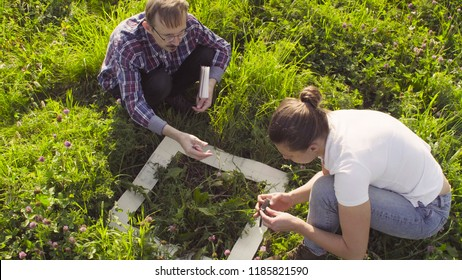 Top view. Two ecologist examining plants on the meadow. Field work