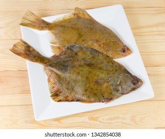 Top view of the two uncooked European plaices also known as flatfish on white square dish on a wooden rustic table