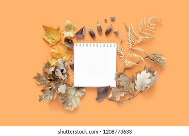 Top view various dried leaves with notebook for your text on orange background. Autumn, fall concept flat lay. Autumn composition