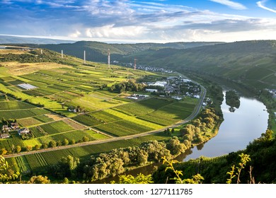 Top view of the vineyards and the river Moselle. Germany's vineyards in the Mosel. Sunset on the Moselle. Blue sky in the clouds