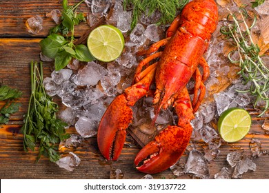Top view of whole red lobster on ice