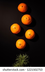 top view of wholesome tangerines and green plant on black backdrop