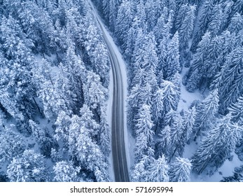 Top view of winter forest and Road at night