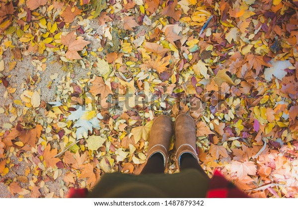 Top view winter woman shoes on autumn foliage