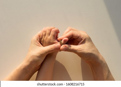 Top view of woman hands putting on massage ring Su-Jock on child finger on white background