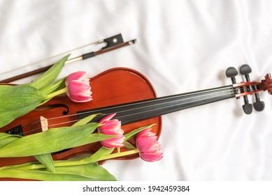 Top view of wooden brown violin and fresh spring tulips. Romantic art composition on beige textile. End of blues concert. Artistry, music, jazz, antique, studio decor concept