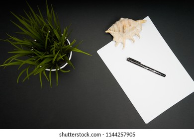 Top view of working station with empty  paper and green plant