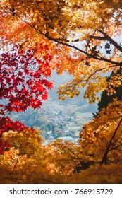 Top of the world in autumn (Yamadera)