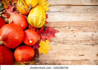 topdown Autumn background with pumpkins overhead view with copy space