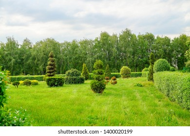 Topiary art landscape. Beautiful garden art decoration on blossom exotic trees background in the park.