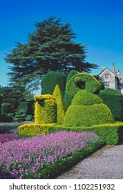 TOPIARY GARDEN AT LEVENS HALL, KENDALL, CUMBRIA, ENGLAND. JULY 2015. The impressive topiary garden at Levens Hall is old and well established over hundreds of years.