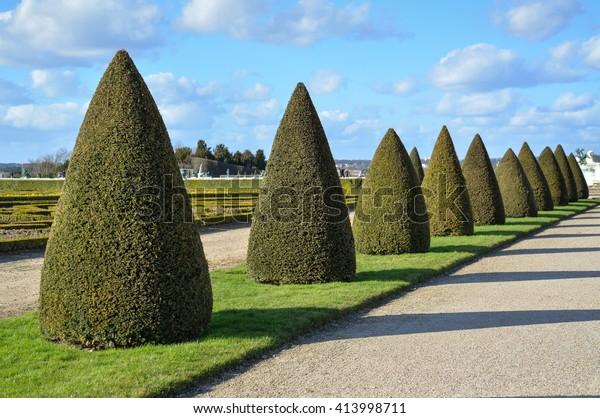 Topiary Trees Garden Stock Photo Edit Now 413998711