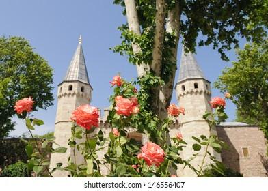 Topkapi Palace with roses, Istanbul, Turkey