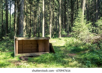 toppled over outhouse in forest clearing
