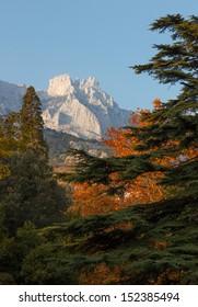 Tops of the mountains Ai-Petri through autumn trees in Alupka Vorontsov park on the southern coast of Crimea