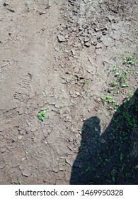 The topsoil has dried and cracked, in the sun, in hot weather. Imprint of shoes on the ground .