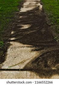 Topsoil run off on sidewalk construction zone