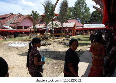 TORAJA HOUSES/TANA TORAJA/SULAWESI/INDONESIA-JUNE 2012: Toraja death houses are stunning