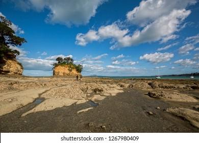 Torbay Tor at Waiake Beach Auckland Beach, New Zealand