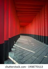 Tori gates....as one walks down this path ,the soul starts to wake