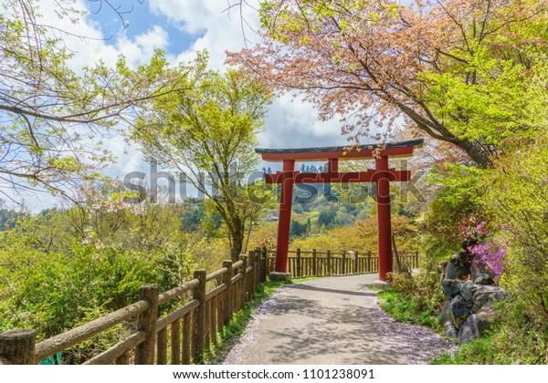 Torii at mount mitake Japan .