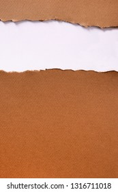 Torn brown paper strip header background vertical