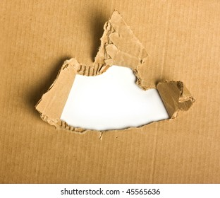 Torn cardboard on a white background
