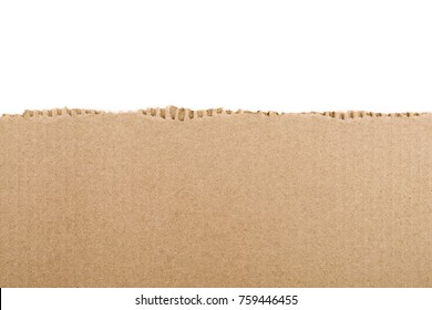 Torn cardboard Paper with space for text