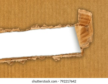 a torn cardboard for writer project