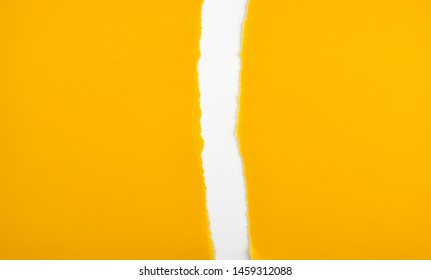 torn in half empty yellow sheet of paper on white background, close up