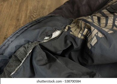 Torn hood of an anorak