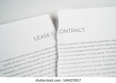 torn up lease contract on a white background