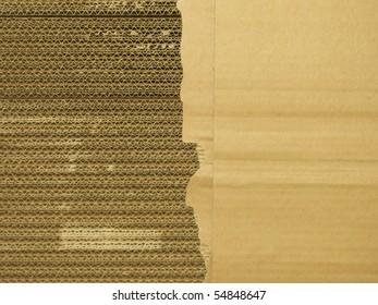 torn packaging cardboard