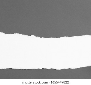 torn paper on gray background with copy space for text