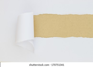 Torn Paper with space for text with brown background