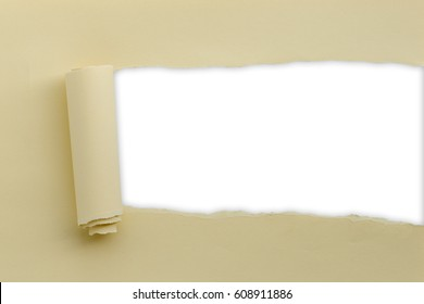 Torn paper with space for text with white background