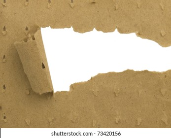 torn paper with space for your text or illustration