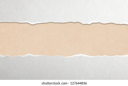 torn paper with white copy space