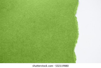 torn sheet of paper on a white background  in colors of the year 2017 GREENERY pantone