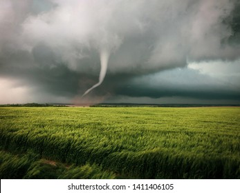 Tornado moves across a wheat field