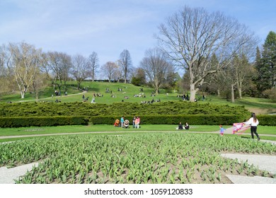 TORONTO - 2018 MARCH 28 : View from High Park in Toronto, Canada. High Park is Toronto's largest public park featuring many hiking trails, sports facilities, diverse vegetation, a beautiful lakefront.