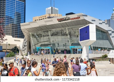 TORONTO, CANADA - JULY 15, 2018: View of Toronto Aquarium. Ripley's Aquarium of Canada is a public aquarium in Toronto, Ontario, Canada.