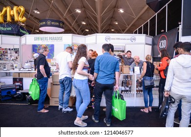 TORONTO - MAY 27: Customers checking out cannabis products during the cannabis expo on May 27 2018 in Toronto, Canada.