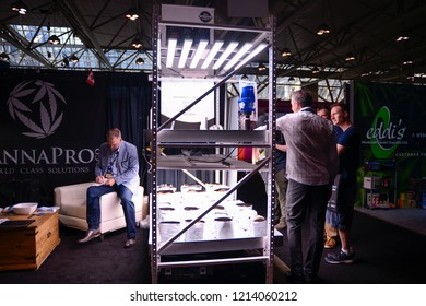 TORONTO - MAY 27: People discussing technologies to home grow cannabis during the cannabis expo on May 27 2018 in Toronto, Canada.